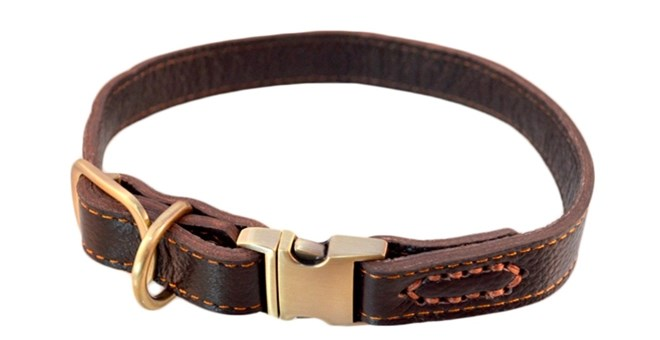 Leather Paws Quick Release Dog Collar | Free Shipping | Jane