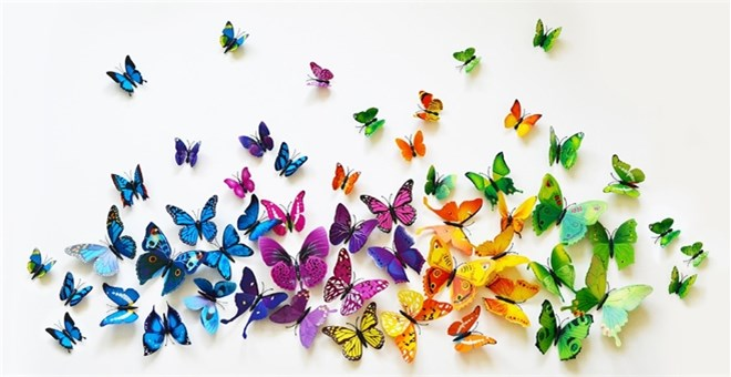 3D PVC Butterfly Wall Decor, 12-Piece Set - 4 Colors | Jane
