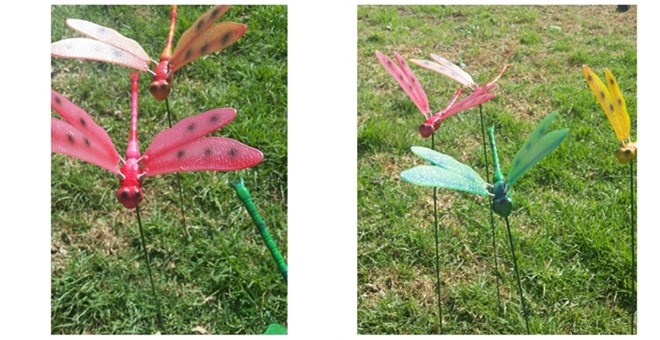 Dragonflies Yard Decor Yard Stake Cute Colors Spring